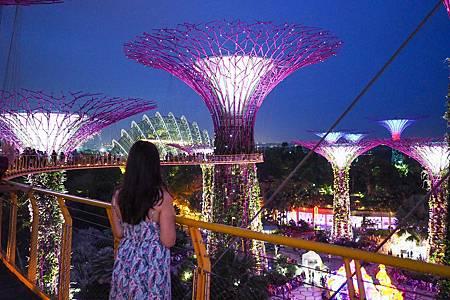 【新加坡 | 景點】花園城市中的奇幻森林✡天空樹 x 空中走廊OCBC Skyway