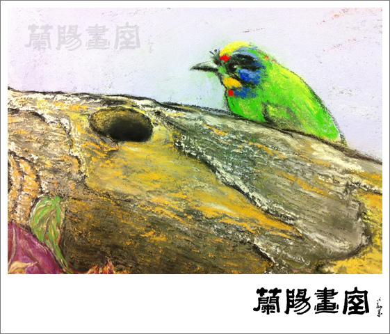 畫室部落格_201403_方銘亮五色鳥_02
