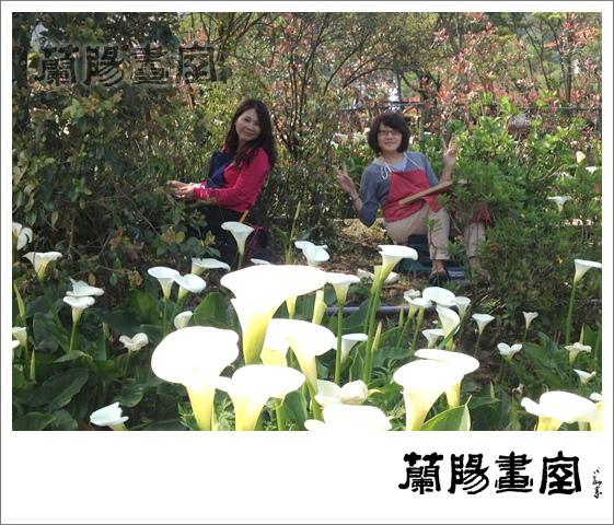 畫室部落格_201405_草山寫生_05