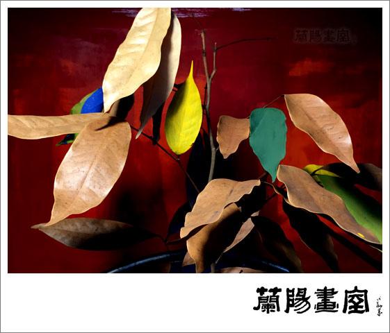 畫室部落格_201602_新年新氣象_06