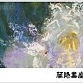 畫室部落格橫幅_201704_楊老師作品_曇花_05.jpg