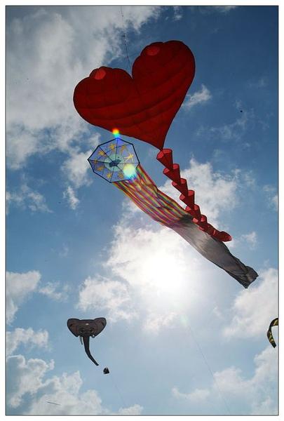 風箏高掛.jpg