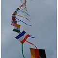 風箏高掛_2.jpg