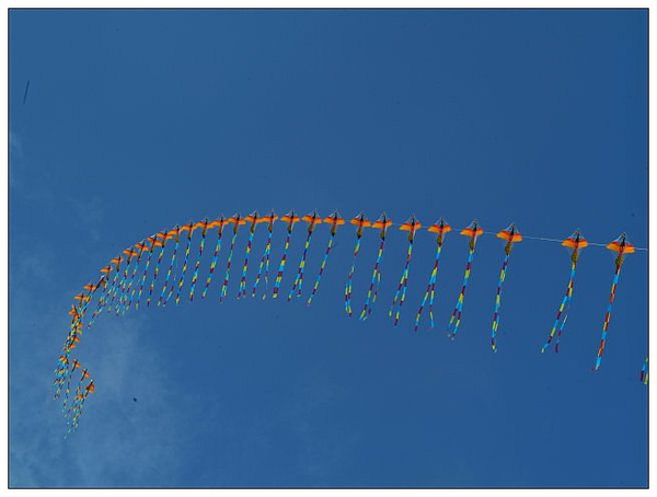 風箏高掛_3.jpg