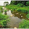 鹿角溪溼地.jpg