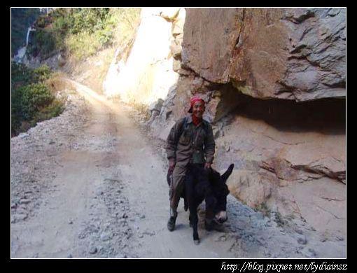 察貢公路上趕驢的藏族青年