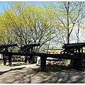 公園中幾尊大砲林立