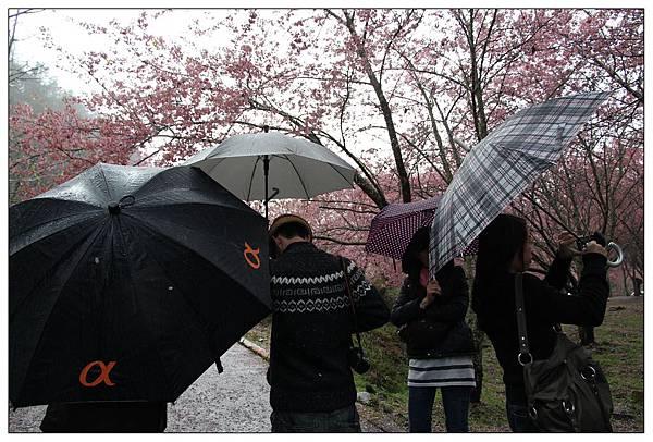 雨下得很大~