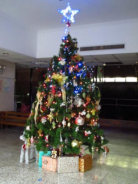 法文班的聖誕樹