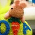 我的兔子整個超畸形...