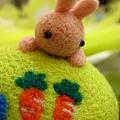 老師的兔子好可愛