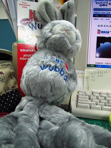 KONG的兔子