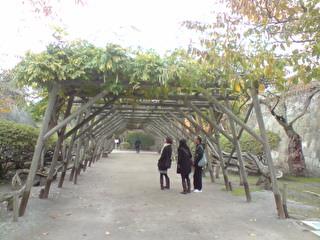 五陵郭公園05.JPG