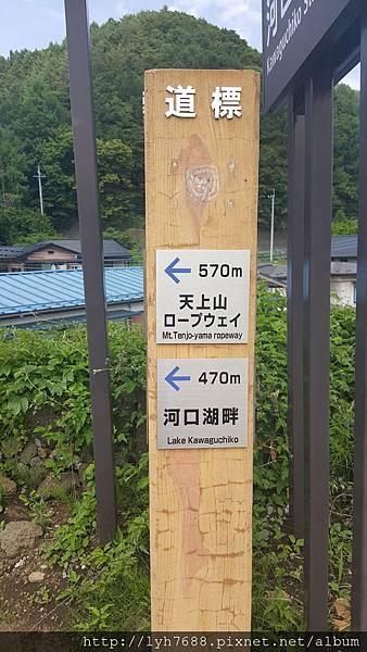 20160611_134310.jpg