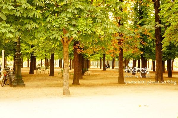 杜樂麗花園2012-0709-210815.JPG