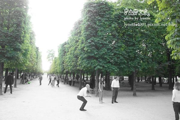 杜樂麗花園2012-0709-210926.JPG