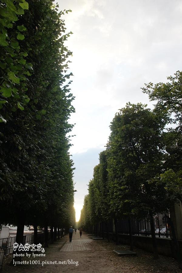 杜樂麗花園2012-0709-211440.JPG