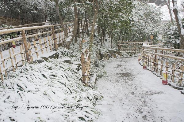 東京椿山莊2014-0208-091244.JPG