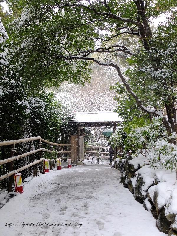 東京椿山莊2014-0208-092146.JPG