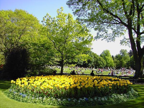 Botanic Gardens (1)