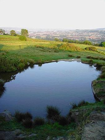16. A Pond (2)