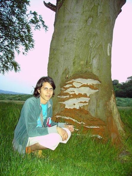 26. Josued by Giant Mushrooms