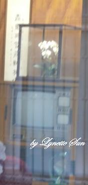 An old TV @ Kwoh-Ting Li's house [李國鼎故居家中老舊電視機 - 有3個螢幕喔!]