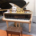 A butterfly piano [世界上最小的演奏琴,又稱蝴蝶琴]