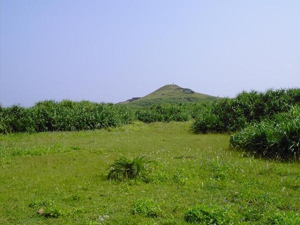 13. Meadow [大草原]