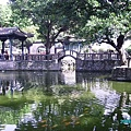18. The great banyan shaded pond.JPG