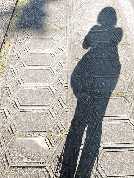 台中孔廟-my影子