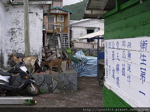 P1120870蘭嶼 東清部落