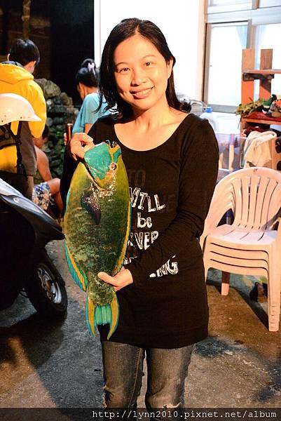 P1130389蘭嶼 服恩民宿 施爸捉的鸚哥魚