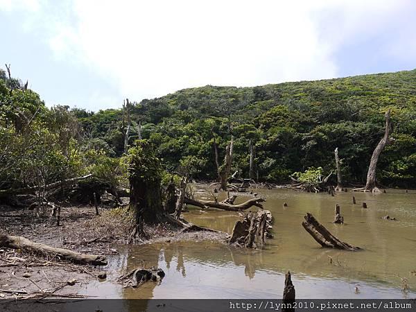 P1130422蘭嶼-大天池