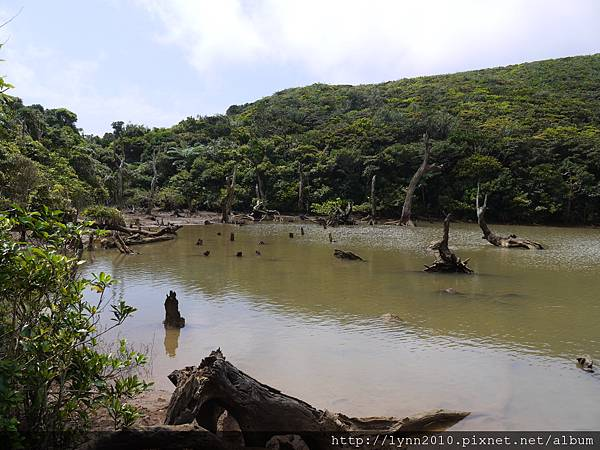 P1130425蘭嶼-大天池