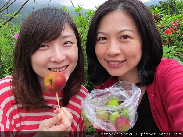 陽明山竹子湖-醃桃子