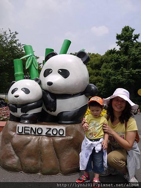 東京-Day 2-上野動物園 (9)