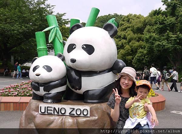 東京-Day 2-上野動物園 (10)