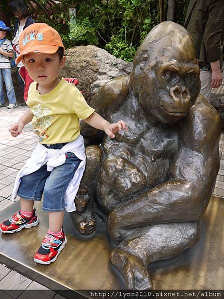 東京-Day 2-上野動物園 (20)