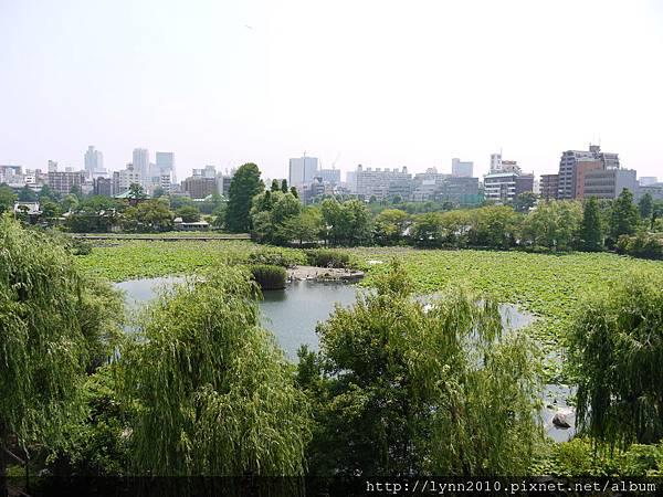 東京-Day 2-上野動物園 (46)