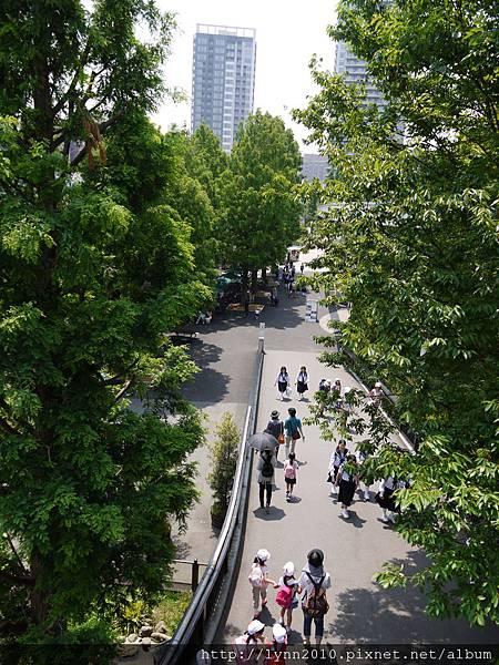 東京-Day 2-上野動物園 (47)