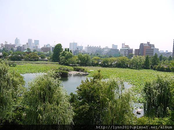 東京-Day 2-上野動物園 (48)