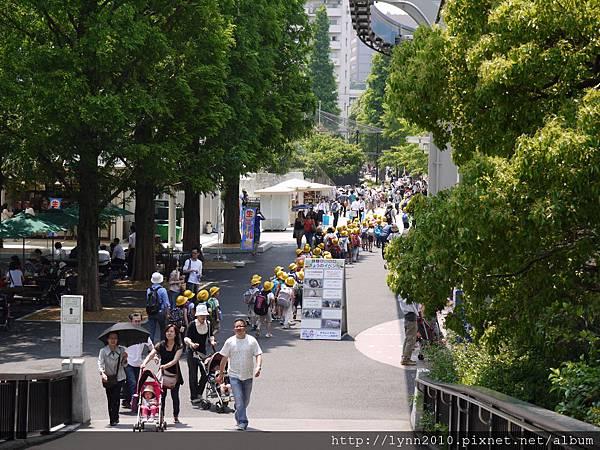 東京-Day 2-上野動物園 (49)