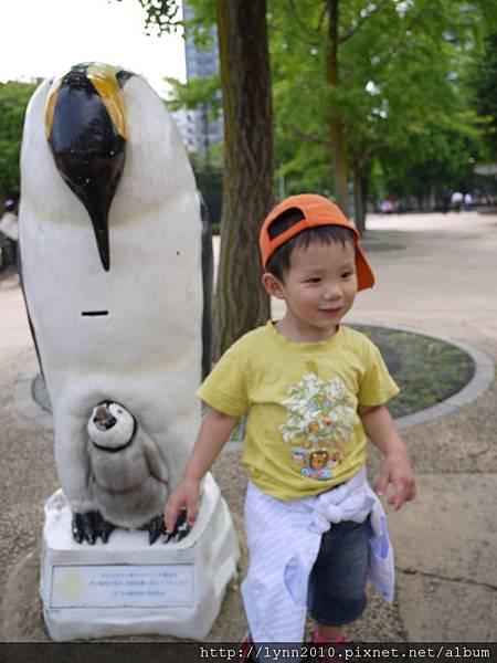 東京-Day 2-上野動物園 (70)