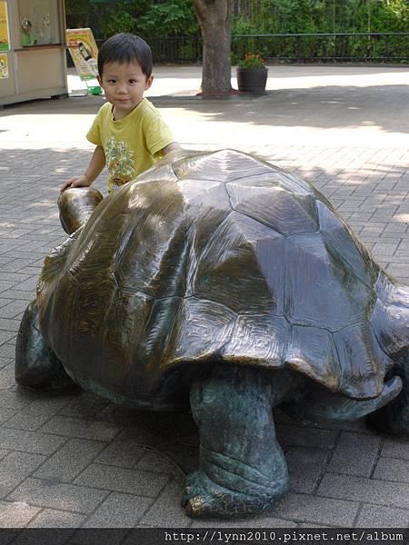 東京-Day 2-上野動物園 (93)