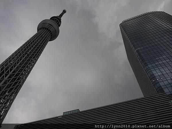 東京-Day 4-押上晴空塔 (52)