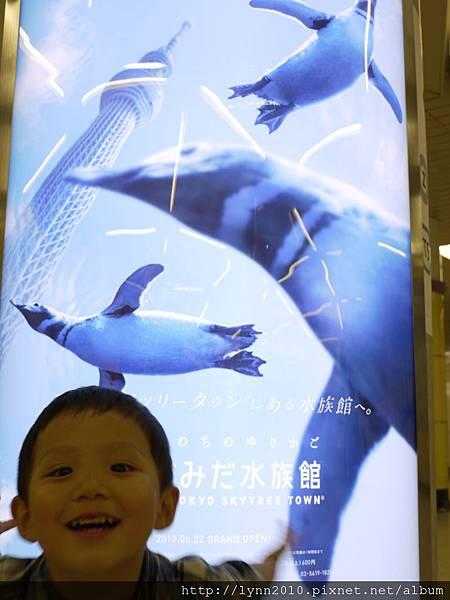 東京-Day 4-秋葉原與押上晴空塔 (70) 媽咪~企鵝ㄟ~