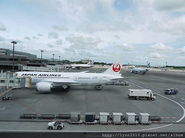 東京-Day 5-成田機場 (1)