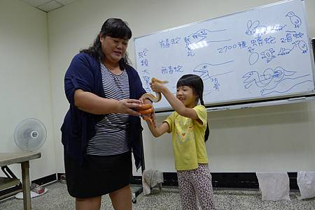 英文課+動物課玉米蛇+刺蝟+Updownaround學習單 033