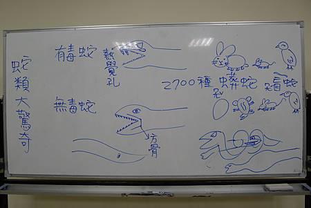 英文課+動物課玉米蛇+刺蝟+Updownaround學習單 009